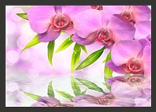 Purple Orchids 210cm x 300cm Wallpaper East Urban