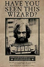 Pyramid International Harry Potter Wanted Have You
