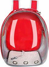Qazxsw Cat Carrier Bag Breathable Transparent