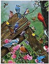 QHDXL Paint by Numbers Aviary Peony DIY Digital