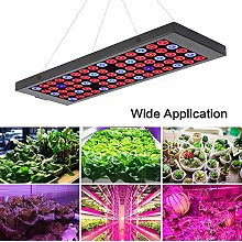 QHENS Plant Light, Grow Lights for Indoor Plants