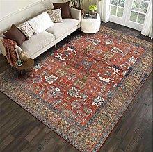 qijidzswyxgs Traditional Living Room Rug