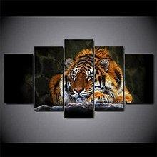 QMCVCDD 5 Panel Wall Art Canvas Animal Tiger