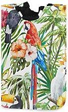 QMIN Laundry Basket Parrot Toucan Macaw Flower