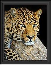 Quiet Leopard Framed Photographic Art Print East