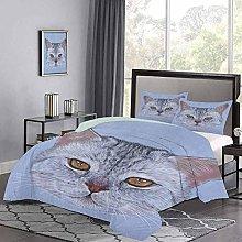 Quilt Cover Scottish Straight Kitty Portrait Pet