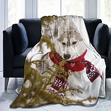 QWERDF Dog Siberian Husky Blanket Couch Sofa Soft