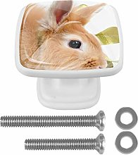 Rabbit with A Green Bow Drawer Knob for Home