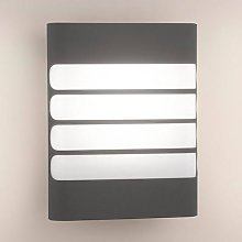 Raccoon LED Outside Wall Light Anthracite