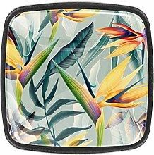 Rainforest Jungle Palm Leaf Tropical Flower Floral