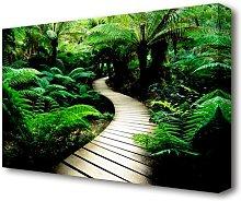 Rainforest Walk Forest Canvas Print Wall Art East