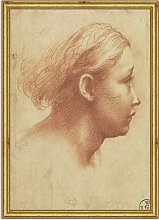 Raphael - Parmagiano Drawing Wood Framed Print, 26