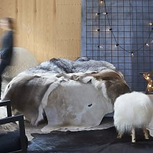Real Cow Hide Rug Brown and White 150x170 cm -