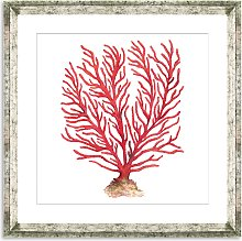 Red Coral 5 - Framed Print & Mount, 46 x 46cm, Red