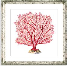 Red Coral 7 - Framed Print & Mount, 46 x 46cm, Red