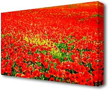 Red Poppy Ocean Flowers Canvas Print Wall Art East