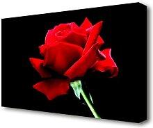 Red Rose Black Velvet Flowers Canvas Print Wall