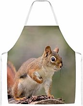 Red Squirrel Home Kitchen Cooking Grill Aprons For