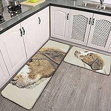 Reebos 2 Pcs Kitchen Rug Set, Brittany Cute Dog