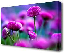 Remember Love Flowers Canvas Print Wall Art East