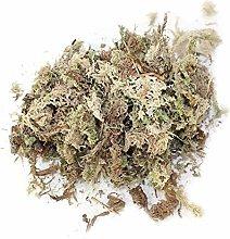 rethyrel Sphagnum Moss - Water Moss Dry Moss Water