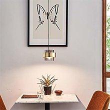 Retro Ceiling Light Glass Shade Hanging Light LED