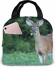 Reusable Lunch Box,Insulated Lunch Tote,Thermal
