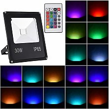 RGB LED Flood Light with Remote Control, IP65
