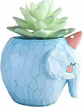 Rishx Small Elephant Succulents Vase Blue Animal