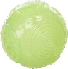 Rosewood ball phosphorescent dog toy