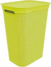 Rotho, Brisen, Laundry basket 50l with lid,