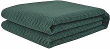 Rotman Tent Carpet Sol 72 Outdoor Colour: Green,