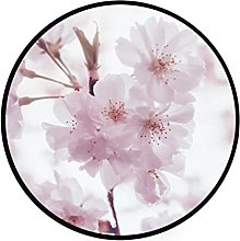 Round Area Rugs Pale Pink Peach Blossom 3 Feet