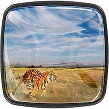 Round Door Cabinets Knobs(4-Pack),Bengal Tiger in