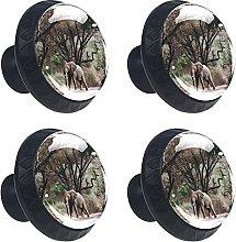 Roya Ann Miller 4PCS Round Drawer Knob Pull Handle