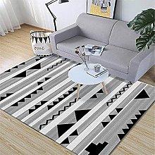 Rug For Living Room Large Minimalist Modern