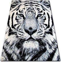 Rugsx - Carpet BCF FLASH 33297/170 Shades of grey