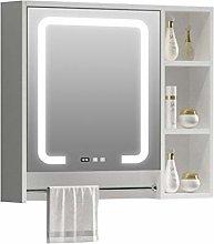 RXDP Smart LED Bathroom Mirror Cabinet,