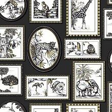 Safari Frames Wallpaper Animal Tiger Lion Black