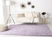 Safavieh Shaggy Indoor Woven Rectangle Area Rug,