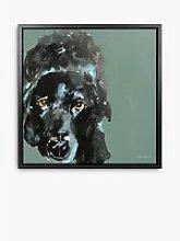 Samantha Barnes - Labrador Dog Framed Canvas