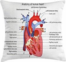 Samirah Educational Human Body Organ Outdoor
