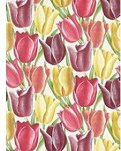 Sanderson Early Tulips Wallpaper, DVIWEA103,