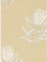 Sanderson Protea Flower Wallpaper