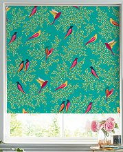 Sara Miller Birds Roller Blind, Green/Multi