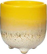 Sass & Belle Mojave Glaze Yellow Egg Cup
