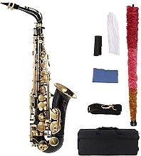 Sax Beginners Kit Eb Alto Saxophone Brass