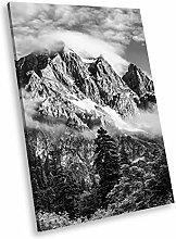 SC998 Forest Mountain Black White Portrait Canvas
