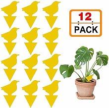 Schildeng 12 Pack Sticky Fruit Fly Fungus Gnat