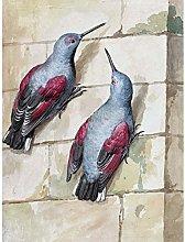 Schouman Wallcreeper Birds Blue Purple Drawing Art